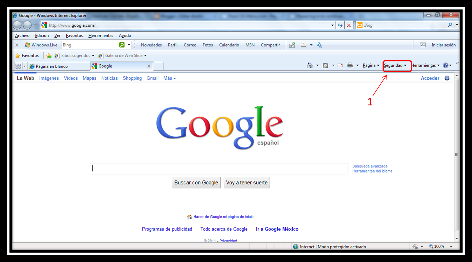 how to make google as homepage in internet explorer